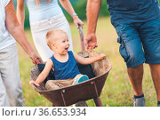 Family pushing their small child and grandchild in a wheelbarrow. Стоковое фото, фотограф Zoonar.com/Tomas Anderson / easy Fotostock / Фотобанк Лори