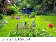 Zierrasen, Blaue Gartenlaube. Стоковое фото, фотограф Zoonar.com/Bildagentur Geduldig / easy Fotostock / Фотобанк Лори