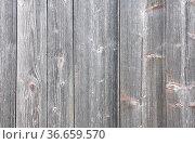 Hintergrund aus Holz - Grey boards. Стоковое фото, фотограф Zoonar.com/Robert Biedermann / easy Fotostock / Фотобанк Лори