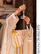 The elevation of the Goblet with the sacramental wine during the Catholic... Стоковое фото, фотограф Zoonar.com/fabio lotti / easy Fotostock / Фотобанк Лори