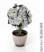 Money plant in the pot. 100 dollar bills on the plant. 3D illustration... Стоковое фото, фотограф Zoonar.com/Cigdem Simsek / easy Fotostock / Фотобанк Лори