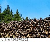 Stacked tree trunks, woodpile, roundwood, South Tyrol, Alto Adige... Стоковое фото, фотограф Angelo Calvino / age Fotostock / Фотобанк Лори