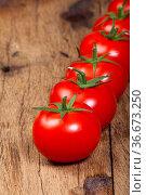 Nahaufnahme reife Tomaten in einer Reihe. Стоковое фото, фотограф Zoonar.com/Thomas Klee / easy Fotostock / Фотобанк Лори