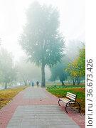 Park alley in the fog in autumn. Стоковое фото, фотограф Zoonar.com/{Sergieiev} / easy Fotostock / Фотобанк Лори