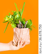 Hand holds green food in a paper bag over orange wall. Conscious Consumption... Стоковое фото, фотограф Zoonar.com/Oksana Shufrych / easy Fotostock / Фотобанк Лори