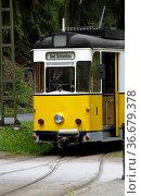 Kirnitzschtalbahn (Bad Schandau) Стоковое фото, фотограф Zoonar.com/Martina Berg / easy Fotostock / Фотобанк Лори