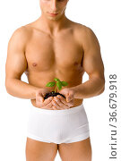 Muscular man holding small plant and soil in his hands. Isolated on... Стоковое фото, фотограф Zoonar.com/Tomasz Trojanowski / easy Fotostock / Фотобанк Лори