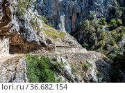 The Cares trail, garganta del cares, in the Picos de Europa Mountains... Стоковое фото, фотограф Zoonar.com/Rudolf Ernst / age Fotostock / Фотобанк Лори