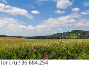 Idyllic scenery around Wiesenfelden in the Bavarian Forest at summer... Стоковое фото, фотограф Zoonar.com/Achim Prill / easy Fotostock / Фотобанк Лори