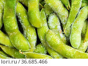 Food background - many frozen Edamame (unripe soybeans) pods close up. Стоковое фото, фотограф Zoonar.com/Valery Voennyy / easy Fotostock / Фотобанк Лори