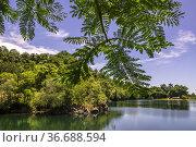 Tasik Biru (Blue Lake), Bau, Sarawak, East Malaysia. Стоковое фото, фотограф Chua Wee Boo / age Fotostock / Фотобанк Лори