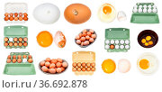 Collection of various raw chicken eggs isolated on white background. Стоковое фото, фотограф Zoonar.com/Valery Voennyy / easy Fotostock / Фотобанк Лори