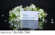 Greeting card for mother and blooming spring branch with flowers. Стоковое видео, видеограф Peredniankina / Фотобанк Лори