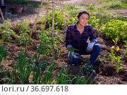 Latino woman working on a farm field on hot day. Стоковое фото, фотограф Яков Филимонов / Фотобанк Лори