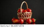 Fresh ripe red tomatoes in basket isolated on black. Стоковое видео, видеограф Peredniankina / Фотобанк Лори