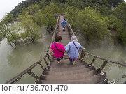 A wooden bridge crossing the mangrove tree area in the Bako National... (2015 год). Редакционное фото, фотограф Chua Wee Boo / age Fotostock / Фотобанк Лори