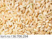 Food background - uncooked unpolished brown rice grains. Стоковое фото, фотограф Zoonar.com/Valery Voennyy / easy Fotostock / Фотобанк Лори