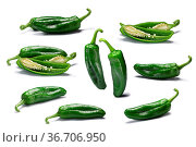 Set of whole and halved green Anaheim or California peppers (Capsicum... Стоковое фото, фотограф Zoonar.com/Max Tat / easy Fotostock / Фотобанк Лори