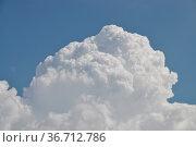 Wolke, wolken, wetter, wetterkunde, meteorologie, himmel, gewitterwolke... Стоковое фото, фотограф Zoonar.com/Volker Rauch / easy Fotostock / Фотобанк Лори