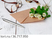 White clover lies on the envelope, a summer letter concert. Стоковое фото, фотограф Zoonar.com/Photographer: Andrey N.Cherkasov / easy Fotostock / Фотобанк Лори