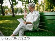 An elderly woman in glasses using laptop on bench. Стоковое фото, фотограф Tryapitsyn Sergiy / Фотобанк Лори