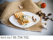 fried bread toast with cheese spread with boiled dried mushrooms on a wooden table. Стоковое фото, фотограф Peredniankina / Фотобанк Лори