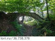 """Gethmanns Garten, Blankenstein, Hattingen, Ruhr Area, North Rhine-Westphalia, Germany"" Редакционное фото, агентство Caro Photoagency / Фотобанк Лори"