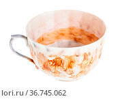 Empty handpainted porcelain teacup isolated on white background. Стоковое фото, фотограф Zoonar.com/Valery Voennyy / easy Fotostock / Фотобанк Лори