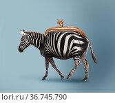 Budget safari - happy zebra and wallet concept. Стоковое фото, фотограф Сергей Новиков / Фотобанк Лори