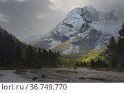 Morning in mountains. Стоковое фото, фотограф александр жарников / Фотобанк Лори