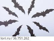 Composition of multiple halloween black bats flying on white background. Стоковое фото, агентство Wavebreak Media / Фотобанк Лори