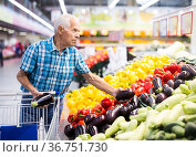 Mature senor examines eggplant in the vegetables section of the supermarket. Стоковое фото, фотограф Татьяна Яцевич / Фотобанк Лори