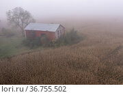 Martin, Michigan - An aerial view of an old barn next to a cornfield... Редакционное фото, фотограф Jim West / age Fotostock / Фотобанк Лори