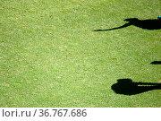 Die Schatten von Fußballspielern bei Aufwärmübungen auf der grünen... Стоковое фото, фотограф Zoonar.com/Bastian Kienitz / easy Fotostock / Фотобанк Лори