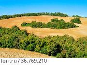 Toskana Huegel im Herbst - Tuscany hills in fall 05. Стоковое фото, фотограф Zoonar.com/Liane Matrisch / easy Fotostock / Фотобанк Лори
