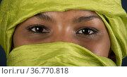 Tuareg Maedchen, Targia mit Chech, algerischer Herkunft. Стоковое фото, фотограф Zoonar.com/Günter Lenz / age Fotostock / Фотобанк Лори