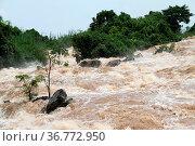 Waterfal Somphamit on the Don Khone island, Laos. Стоковое фото, фотограф Zoonar.com/Valeriy Shanin / age Fotostock / Фотобанк Лори
