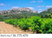 Les Baux-de-Provence 01. Стоковое фото, фотограф Zoonar.com/Liane Matrisch / easy Fotostock / Фотобанк Лори
