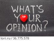 Whats your opinion question handwritten on school blackboard. Стоковое фото, фотограф Zoonar.com/Yury Zap / easy Fotostock / Фотобанк Лори