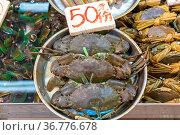 Live Crabs in Tray at Farmers Market. Стоковое фото, фотограф Zoonar.com/Marko Beric / easy Fotostock / Фотобанк Лори