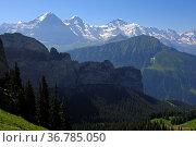 Bergpanorama der Schweizer Alpen mit den Gipfeln Eiger, Mönch und... Стоковое фото, фотограф Zoonar.com/G Fischer / age Fotostock / Фотобанк Лори