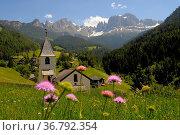 Südtirol, Vajolettürme, Tiers in Richtung Rosengarten, Kirche, Kapelle... Стоковое фото, фотограф Zoonar.com/Bildagentur Geduldig / easy Fotostock / Фотобанк Лори
