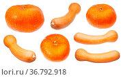 Various orange pumpkins isolated on white background. Стоковое фото, фотограф Zoonar.com/Valery Voennyy / easy Fotostock / Фотобанк Лори