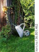 Wilder Garten mit Laube ,an der Wand lehnt eine Schubkarre. Стоковое фото, фотограф Zoonar.com/Uwe Bauch / easy Fotostock / Фотобанк Лори