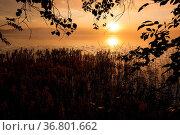 Sunrise at foggy serene lake. Стоковое фото, фотограф Zoonar.com/Juhani Viitanen / easy Fotostock / Фотобанк Лори