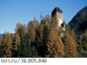 St. pancrazio village/tower, ultimo valley, italy. Стоковое фото, фотограф Danilo Donadoni / age Fotostock / Фотобанк Лори