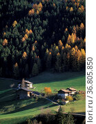 St. pancrazio landscape, ultimo valley, italy. Стоковое фото, фотограф Danilo Donadoni / age Fotostock / Фотобанк Лори