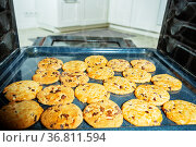 View from inside the oven on tray with cookies. Стоковое фото, фотограф Сергей Новиков / Фотобанк Лори
