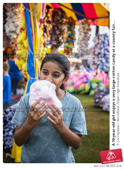 A 10-year-old girl enjoys a very large cotton candy at a county fair... Стоковое фото, фотограф Lori Epstein / age Fotostock / Фотобанк Лори