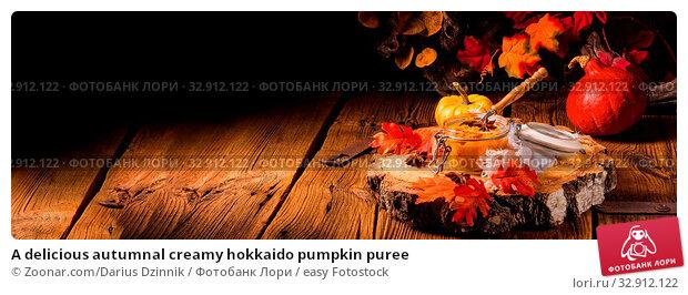 A delicious autumnal creamy hokkaido pumpkin puree. Стоковое фото, фотограф Zoonar.com/Darius Dzinnik / easy Fotostock / Фотобанк Лори
